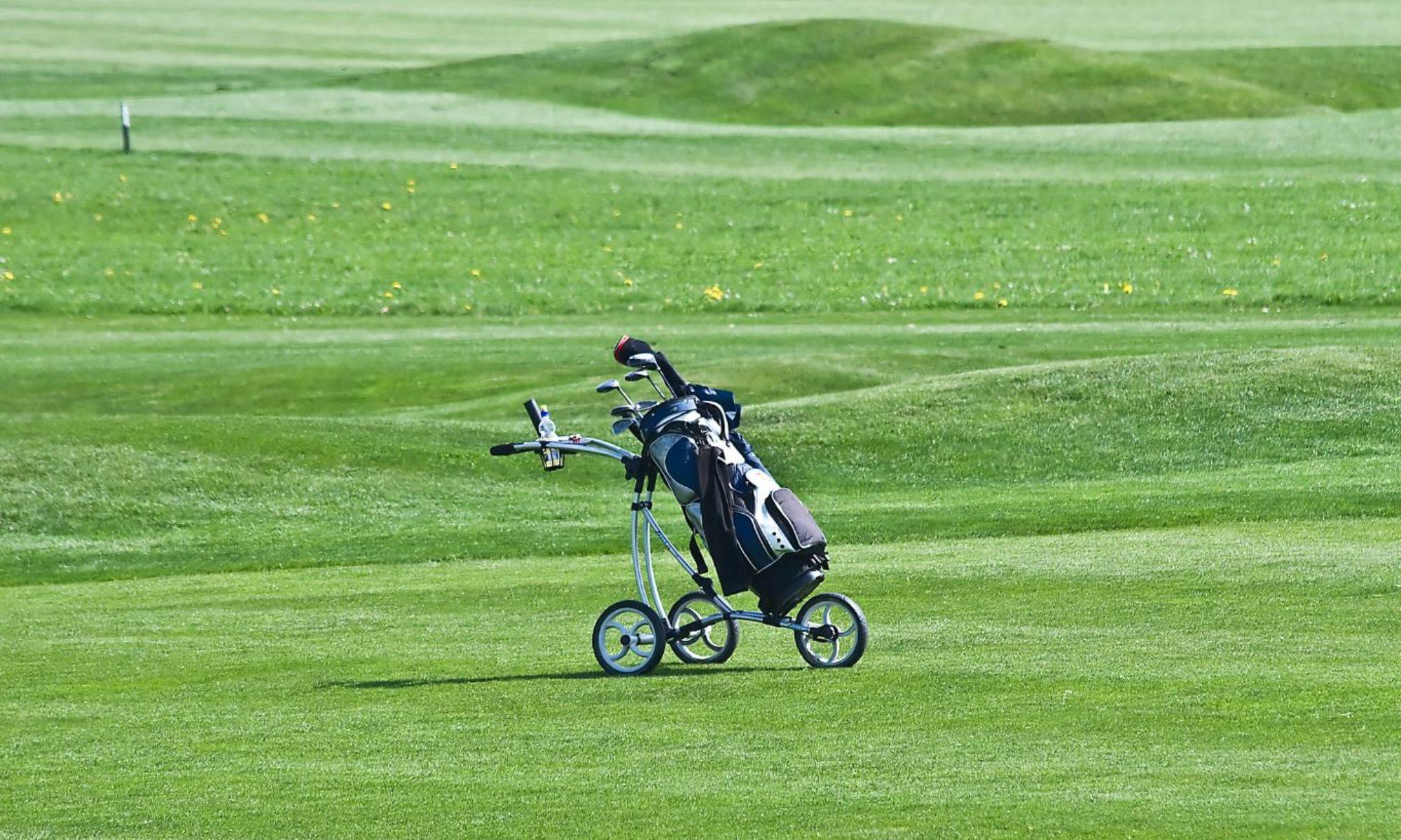 Golf Caddie Pro